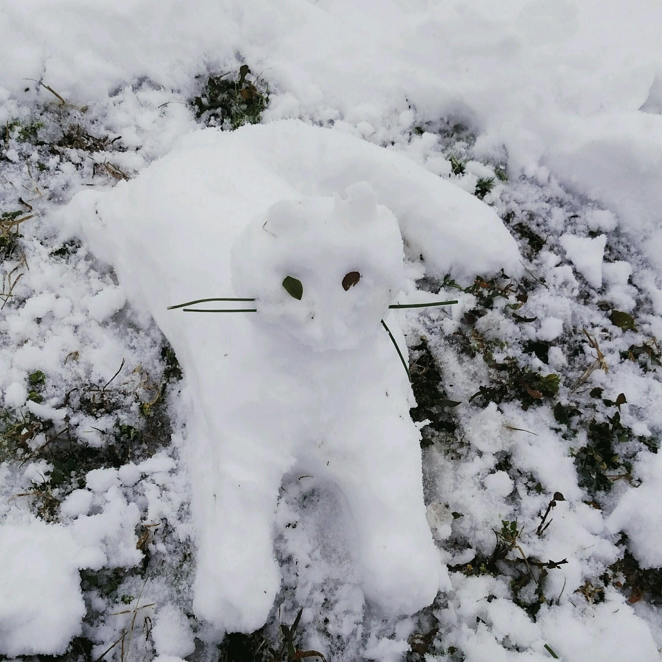 Snow Kitty - art comes in many forms. . .